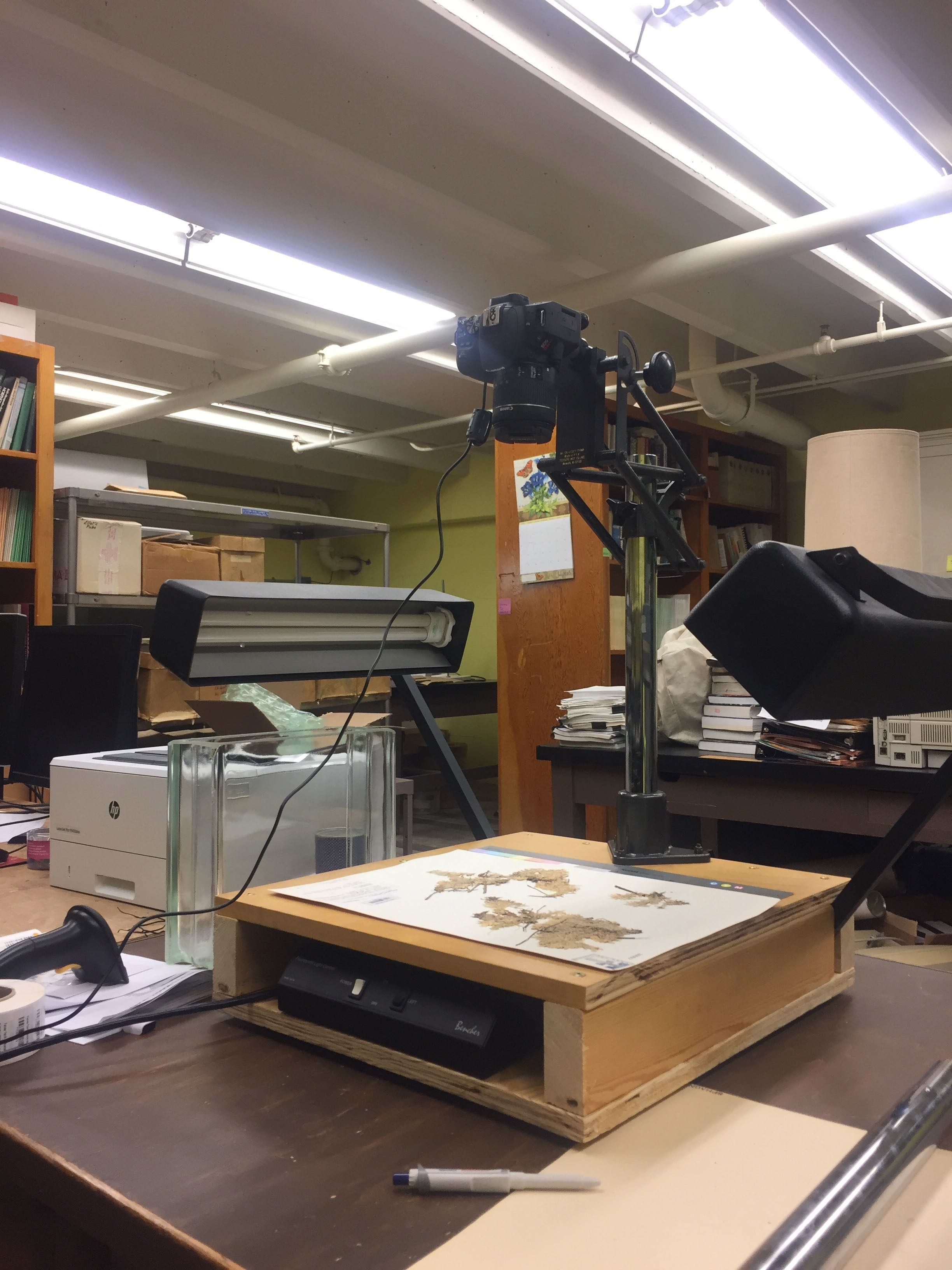 Reed Herbarium Imaging